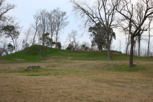 The recently cleared remains of Fort Rosalie