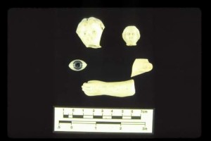 Porcelain and glass doll parts including two heads, one eye, and an arm
